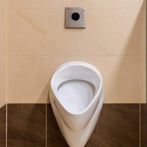 urinal-2667278_1280